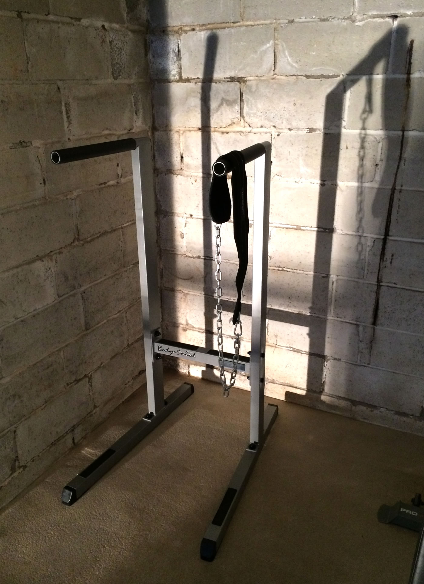 Building a home gym - body solid dip station.