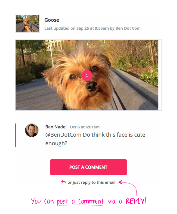 Email that allows reply-based interaction with a web application (like InVision App).
