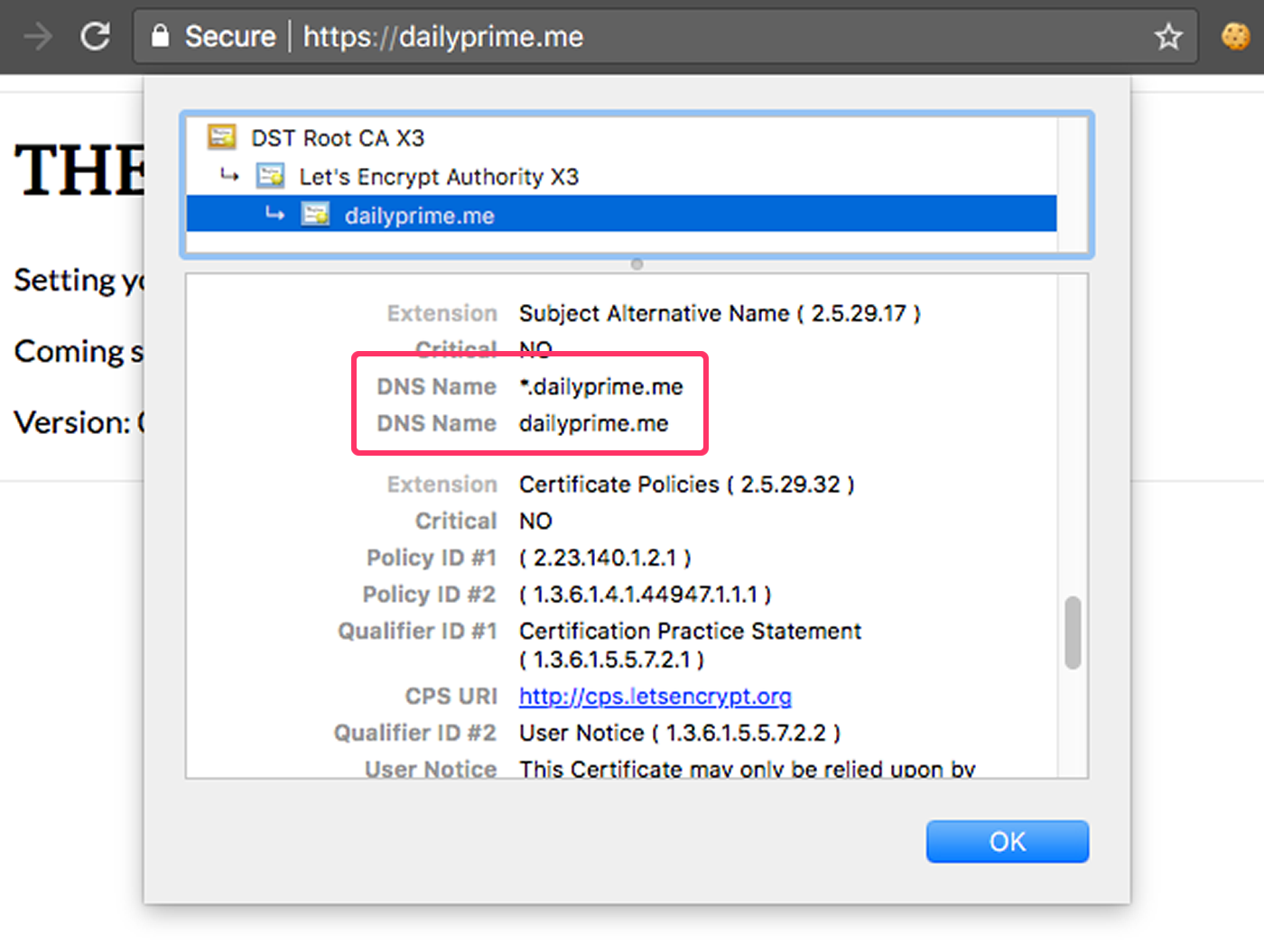Obtaining A Wildcard SSL Certificate From LetsEncrypt Using The DNS